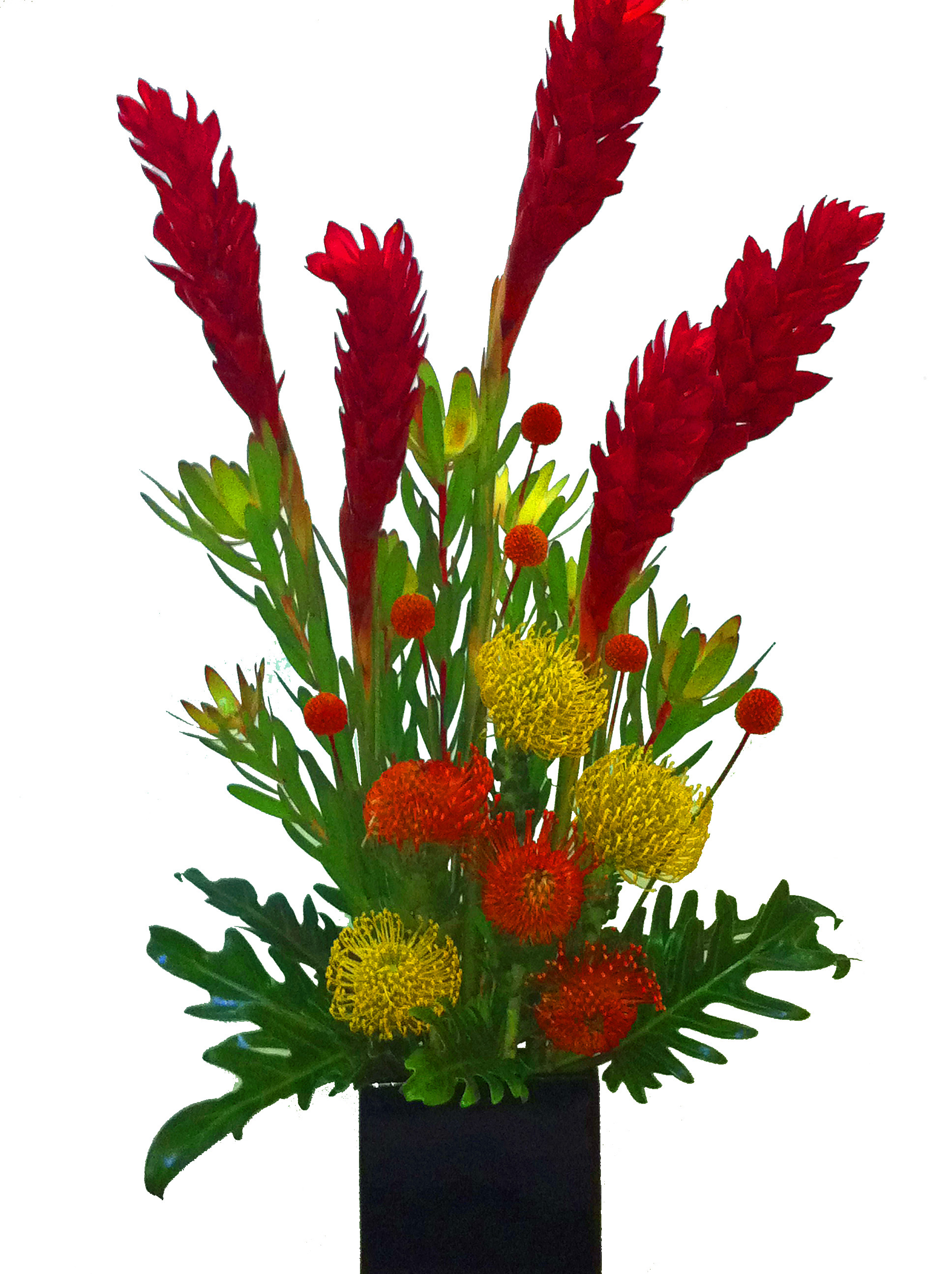 Chicago Weekly Flower Arrangement 4 | Khloros Plants